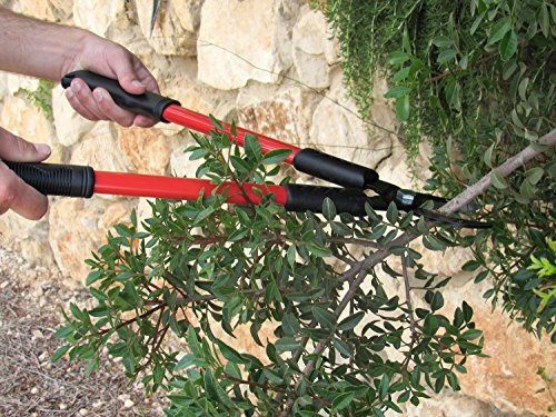 TABOR TOOLS GL18 20-Inch Bypass Mini Lopper, Makes Clean Professional Cuts, 1-Inch Cutting Capacity, Tree Trimmer and Branch Cutter Featuring Sturdy Medium-Sized 15-Inch Handles. by TABOR TOOLS (Image #3)