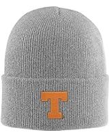 Carhartt Men's 100888 Grey Texas Austin Hat