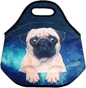 Boys Girls Kids Adults Insulated Neoprene Lunch Bag Tote Handbag lunchbox Food Container Carrying Gourmet Tote Cooler Warm Pouch For Outdoor Travel School Work Office (Starry Sky Pug)