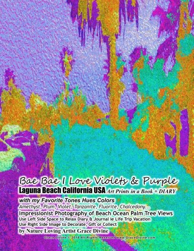 Bae Bae I Love Violets & Purple Laguna Beach California USA Art Prints in a Book + DIARY with my Favorite Tones Hues Colors  Amethyst, Plum, Violet, ... Collect - Amethyst Plum