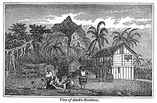 Pitcairn Island Nhome Of John Adams (C1760-1829) Nalias Alexander Smith The Last Surviving Mutineer Of Hms Bounty Wood Engraving 1855 Poster Print by (24 x 36) - Hms Bounty Wood
