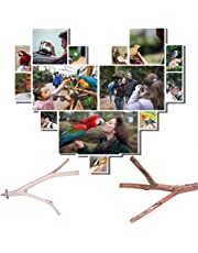 liuxi créatif Oiseau Bois bâtons bâton Naturel perchoir Jouet - Oiseau Stand pôle Cage Accessoires Animal Oiseau Jouets
