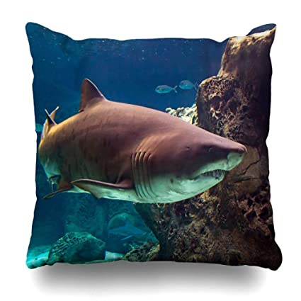 a0691827ef67 NOWCustom Throw Pillow Cover Lights Blue Fish Shark Underwater Natural  Aquarium Wildlife Nature Great White Reef