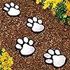 Garden Outdoor Pathway Decking Lokodo 2