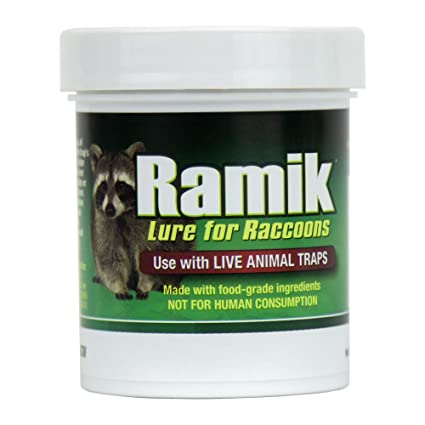 Amazon.com: ramik 951 plagas roedores Lure: Jardín y Exteriores