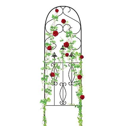 Amazon.com : Amagabeli Garden Trellis for Climbing Plants 60\