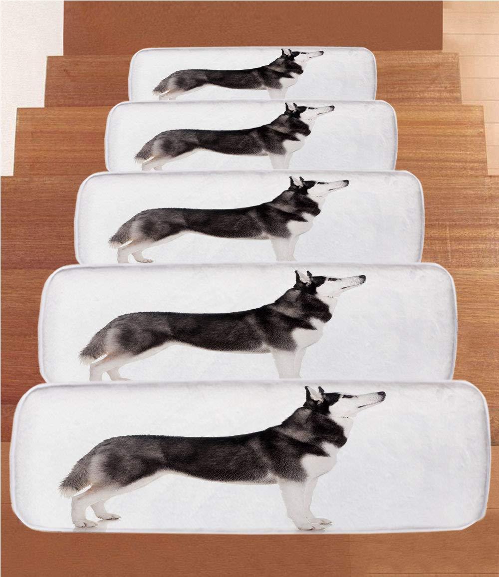 iPrint Non-Slip Carpets Stair Treads,Alaskan Malamute,Alaskan Animal Arctic Canine Mammal Obedient Companion Portrait Purebred,Black White,(Set of 5) 8.6''x27.5''