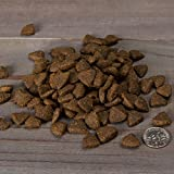Nulo Grain Free Dog Food: All Natural Adult Dry Pet