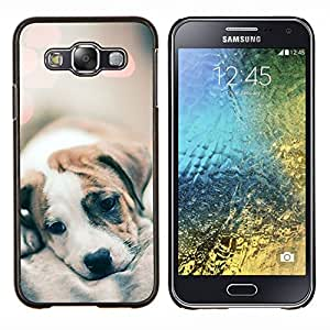 Cachorro Piel Luces borrosas lindos del perro del bebé- Metal de aluminio y de plástico duro Caja del teléfono - Negro - Samsung Galaxy E5 / SM-E500