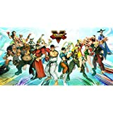 CWS Media Group CWS-27045 Street Fighter V 5 Group Wall Scroll Poster