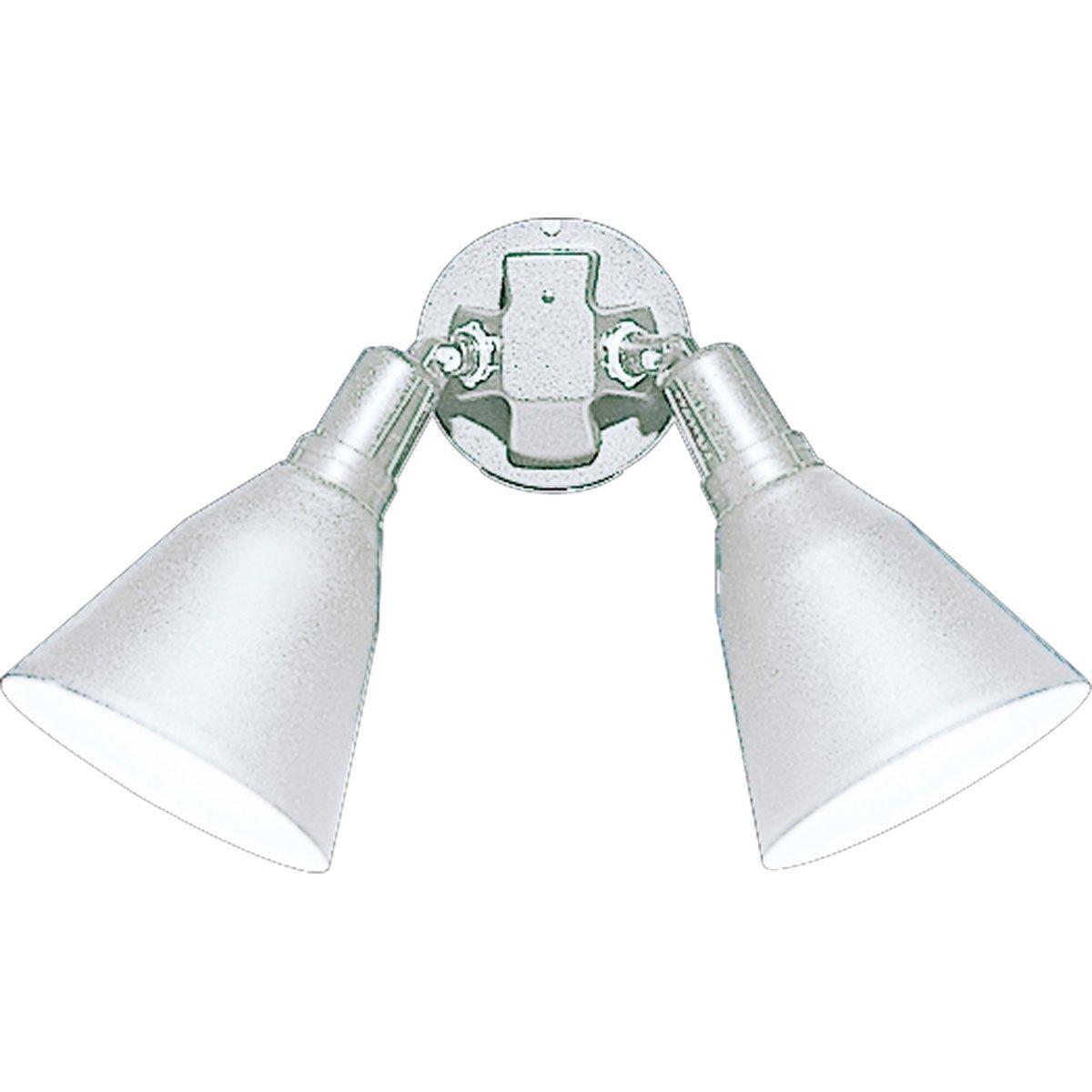 Progress Lighting P5203-30 2 Painted Adjustable Swivel Floodlights All Aluminum, White