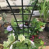 Garden Trellis For Mini Climbing Plant Pot Support Morning Glory Trellis 5.9'' W x 9.8'' H 4 Pack Dark Green