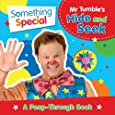 Something Special: Mr Tumble's Hide and Seek: A Peep-Through Book