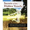 Secrets of the Hidden Vessels, Ae: Explains how Chinese acupuncture works in terms Western readers can understand