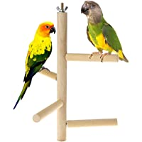 Parakeet Perch,Bird Natural Wood Stand,Parrot Cage Top Wooden Branches for Standing,Toys for Small Medium Parrots Conure…