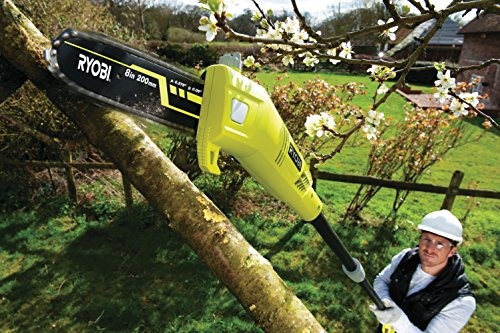 Ryobi RPP750S Pole Pruner with Extension Pole, 750 W – Hyper Green