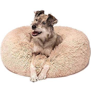 Amazon.com: Zerhey - Cojín redondo de invierno para perro o ...