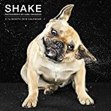2018 Shake Dogs Wall Calendar (Mead)