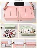 DEALCROX Under Bed Cloth Storage Box-1pc