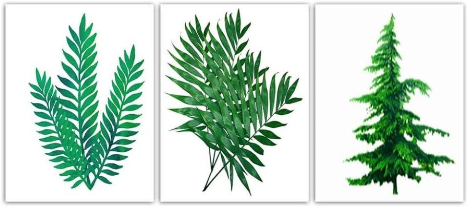 Carteles y grabados nórdicos Arte de la pared Imágenes de bodegones Cuadros modernos de lienzo Impresión Hoja de planta verde Decoración de la sala -40x60cmx3 piezas (sin marco)