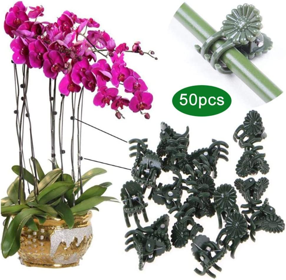 Orchid Clips Plant Orchid Support Clips Flower and Vine Clips for Supporting Stems Vines Grow Upright Dark Green appropriate niyin204 50 PCS Plant Clips