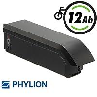 Joycube Phylion Akku Typ SF-06S für E-Bike Pedelec 48V 11,6Ah für u.a Fischer MTB u.a.