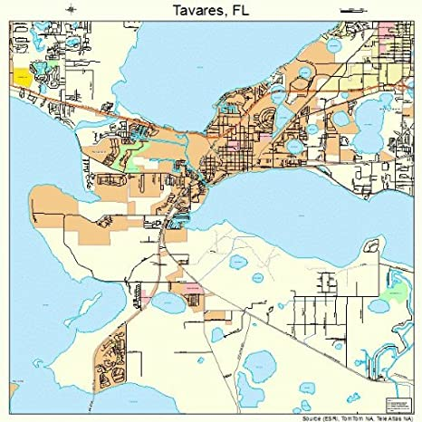 Tavares Florida Map.Amazon Com Large Street Road Map Of Tavares Florida Fl Printed