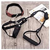 RunHigh Pet Colorful Dog Cat Rope Leashes Collar Harness Lead Adjustable 3 Pcs Set