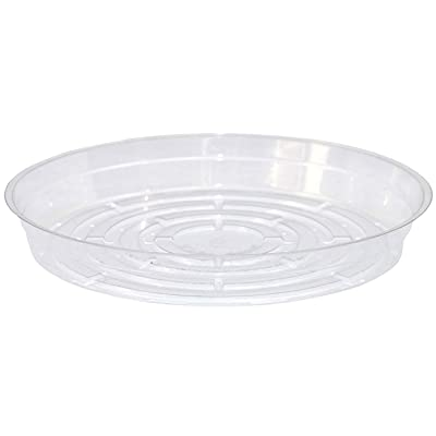 Curtis Wagner Plastics Corp. 6 Pack -CWP Vinyl Plant Saucer, 6-Inch Diameter, Clear : Garden & Outdoor