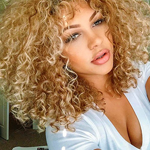 ELIM Blonde Wigs for Black Women Short Curly Hair Wigs Afro Kinky Synthetic Wig Soft Bouncy 18 Inch with Free Wig Cap (Blonde Mixed Brown) Z094A -