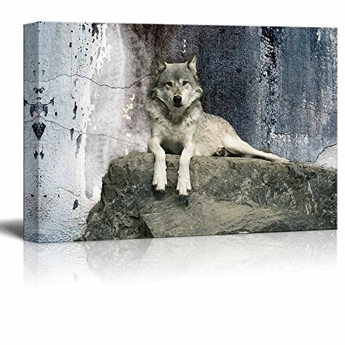 wall26 Animal Theme Canvas Wall Art - A Wolf Laying on a Boulder - Giclee Print Gallery Wrap | Modern Home Decor Stretched & Ready to Hang - 24x36 (Wolf Art Wall Decor)