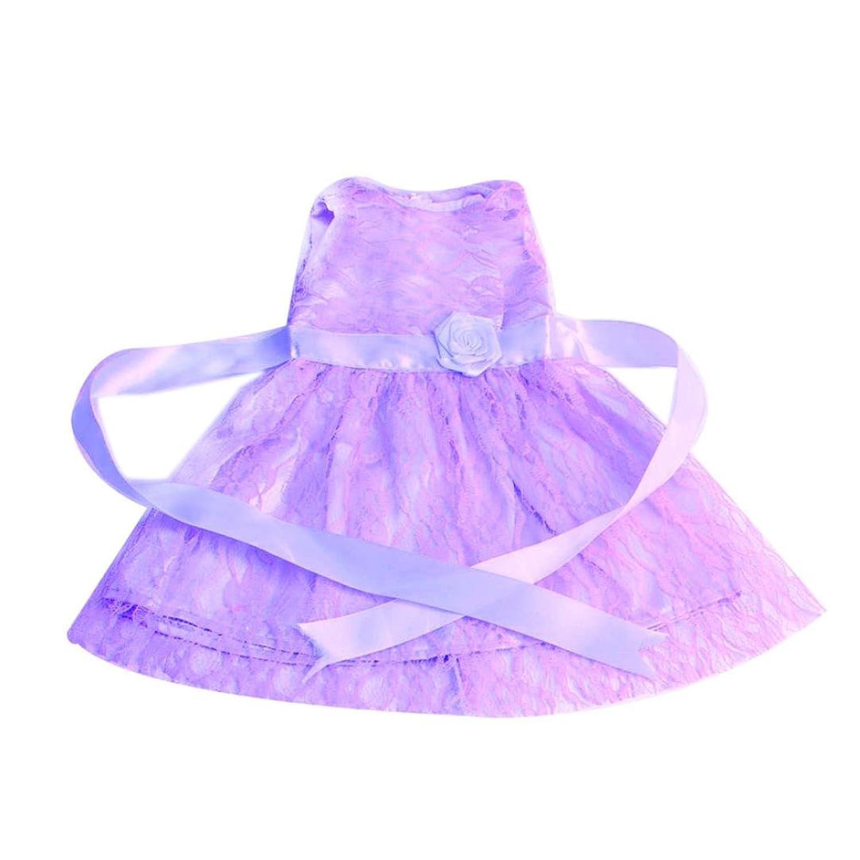 Minshao 18 Zoll American Girl Doll Lace Rock (Lila): Amazon.de ...