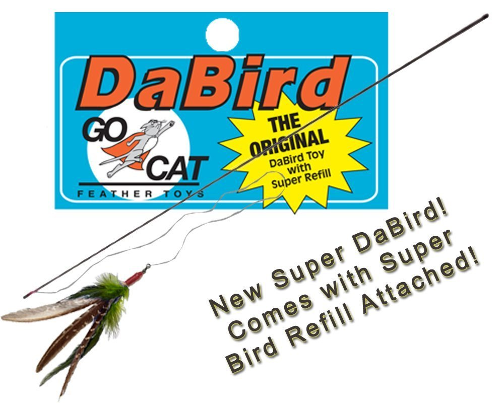 CoolCyberCats The Super Da Bird w/Full Single 36'' Pole w/Handle: Interactive Guinea Feather Cat Toy by CoolCyberCats