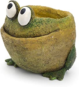 Georgetown Home and Garden Fred The Frog Planter, by Blobhouse, Decorative Planter w/Drain Hole