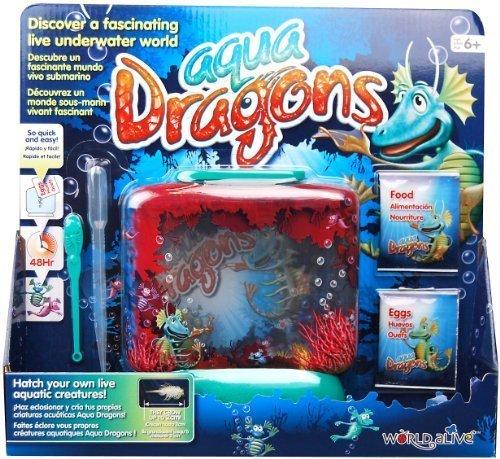 Aqua Dragons Underwater World by Aqua Dragons