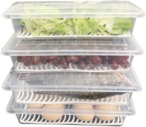 Printasaurus Food Storage Container, Fridge Organizer Case with Removable Drain Plate Stackable Freezer Storage Containers Keep Fresh for Storing Fish, Meat, Vegetables (Pack of 4)