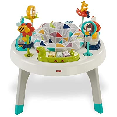 Fisher-Price 2-in-1 Sit-to-stand Activity Center : Baby