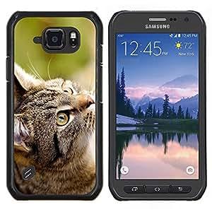 Gato Gris- Metal de aluminio y de plástico duro Caja del teléfono - Negro - Samsung Galaxy S6 active / SM-G890 (NOT S6)