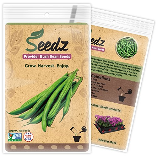 CERTIFIED ORGANIC SEEDS (Appr. 125) - Green Bean Seeds - Heirloom Seeds Beans Collection - Non GMO, Non Hybrid, - Bean Collection