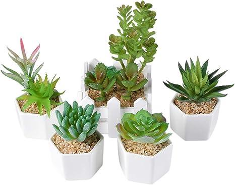 VHFIStj 5 Piezas Plantas Suculentas Artificiales con Maceta para Interior y Exterior - Mini Plantas Artificiales Decoracion Decorativas Pequeñas para Jardín De Casa Decoración Verde: Amazon.es: Hogar