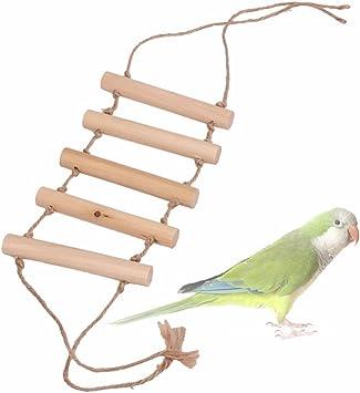 Madera pequeña loro juguetes escalera de puente para rata hamster pájaro jaula accesorios pequeño animal de juguete mascotas aves suministros: Amazon.es: Bricolaje y herramientas