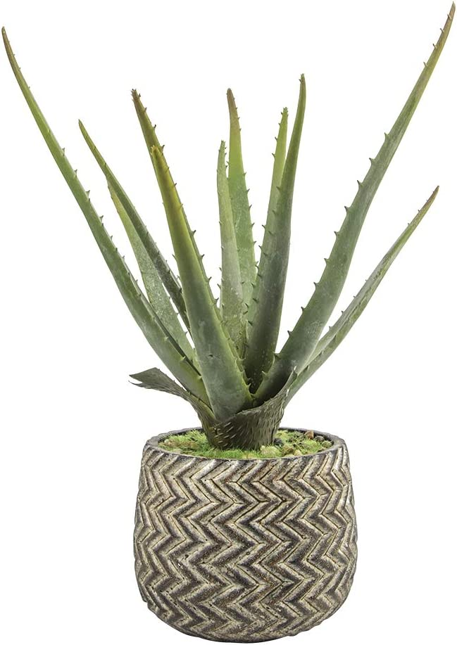 Ferrisland Artificial Faux Aloe Potted Plant with Antique Cement Pot for Home Decors