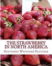 The Strawberry In North America: History, Origin, Botany and Breeding