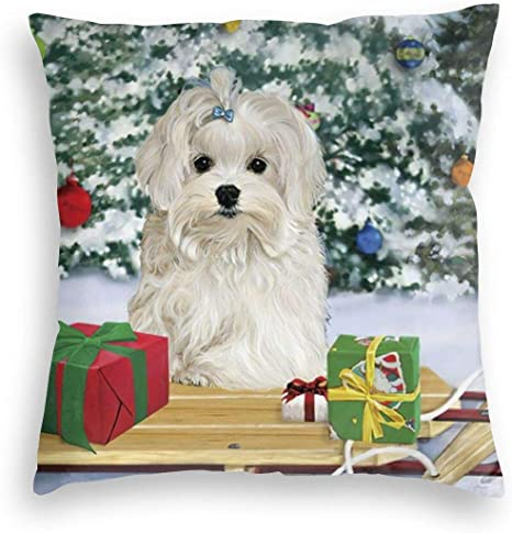Amazon Com Durian Family Christmas Tree Cute Maltese Dog Snow Velvet Soft Square Throw Pillow Covers Home Decor Decorations Cushion Case For Indoor Sofa Bedroom Car 18 X 18 Inch Home Kitchen