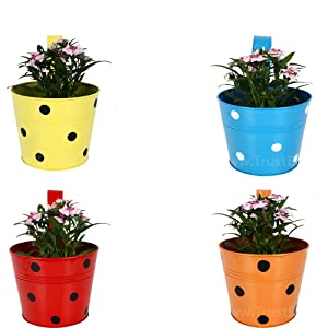 TrustBaske Set of 4 - Single Pot Railing Planter - Red,Yellow,Blue,Orange