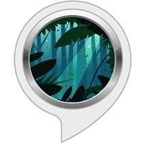 Sleep Sounds: Jungle Night