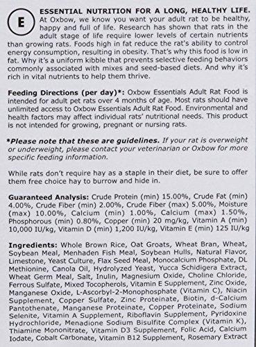 Oxbow-Animal-Health-Essentials-Regal-Adult-Rat-Food-20-Pound