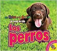 Los Perros (Dogs) (Los Niños Y La Ciencia: Los Ciclos De Vida / Science Kids: Life Cycles)