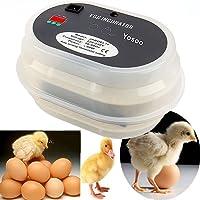 Digital Automática Incubadora de Huevos de Aves