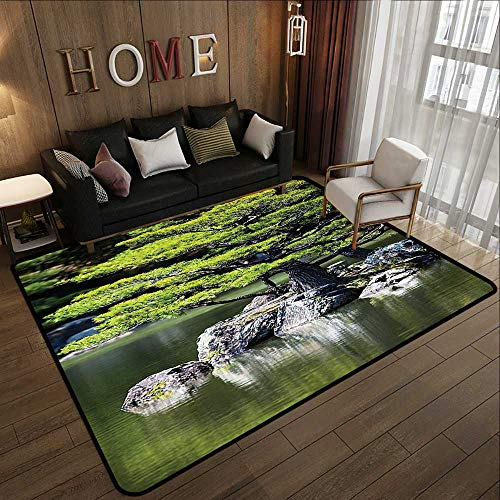 Carpet Flooring,Japanese Decor,Pine Tree in The Lake with Stones Japanese Organic Nature Scenery with Asian Garden Theme,Green 78.7